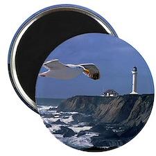 (14) lighthouse & seagull Magnet