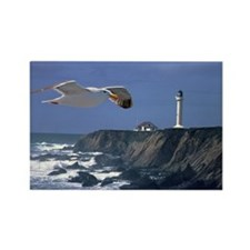 (14) lighthouse & seagull Rectangle Magnet