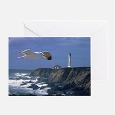 (14) lighthouse & seagull Greeting Card