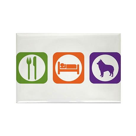 Eat Sleep Schipperke Rectangle Magnet (10 pack)
