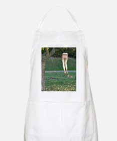 hanginthere Apron
