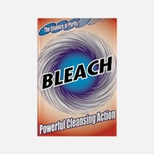 2-bleach1 Rectangle Magnet