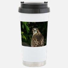 Hawk2eyesGtgCd Stainless Steel Travel Mug
