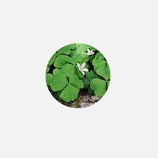 Shamrock Mini Button