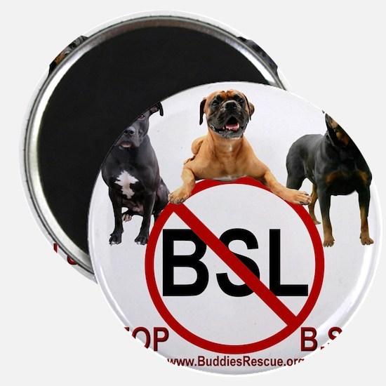 stop_bsl_trans1 Magnet