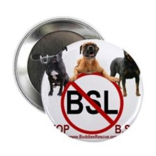 """stop_bsl_trans1 2.25"""" Button"""