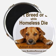 dont_breed_or_buy_puppy_1a-trans Magnet