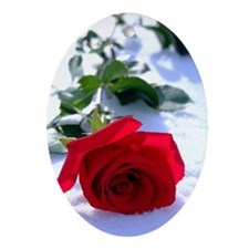 Rose in Snow Oval Ornament