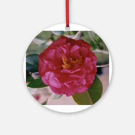 Magenta Camellia Ornament (Round)