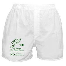 100%_organic_gn_10x10 Boxer Shorts