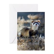soft focus bff Greeting Card