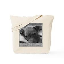 lokiframe Tote Bag