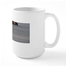 Picture 057 Mug