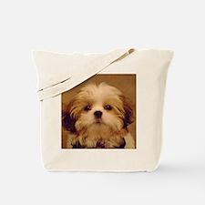 DSC00094 Tote Bag