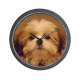 Pet Basic Clocks