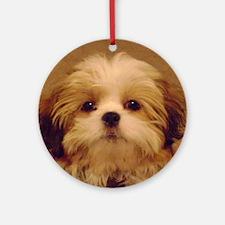 DSC00094 Round Ornament