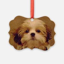 DSC00094 Ornament