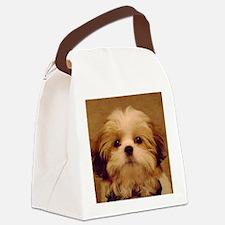 DSC00094 Canvas Lunch Bag