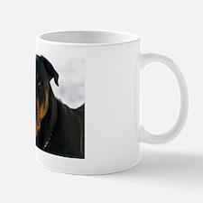 maximusanuebackground Mug