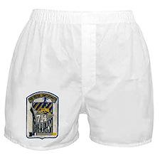 wrrush dd patch transparent Boxer Shorts