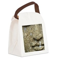 Guidance Canvas Lunch Bag