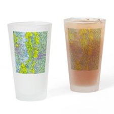 SEA copy2 Drinking Glass