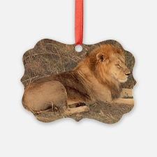 the lion Ornament