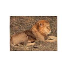 the lion 5'x7'Area Rug