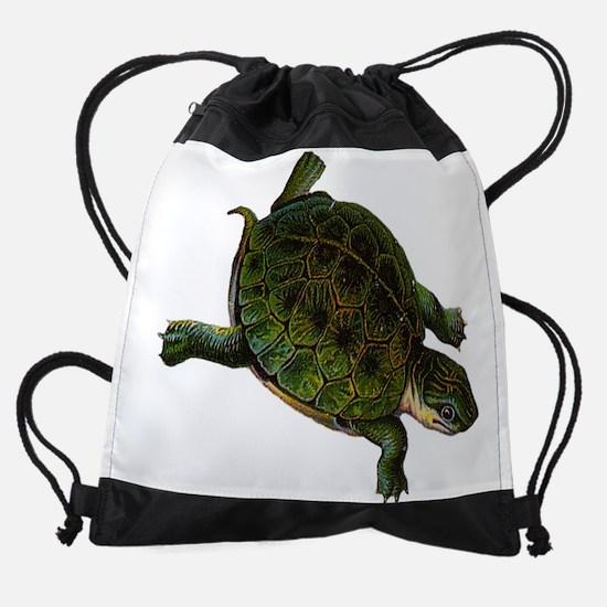 box turtle Drawstring Bag