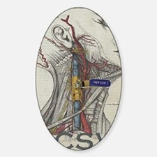 ccsvi2-front Sticker (Oval)