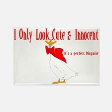 I ONLY LOOK CUTE  INNOCENT Rectangle Magnet