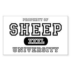 Sheep University Rectangle Decal