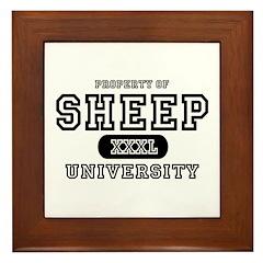 Sheep University Framed Tile