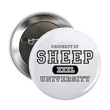 Sheep University Button