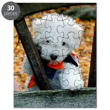 bichon-frise-0331 Puzzle