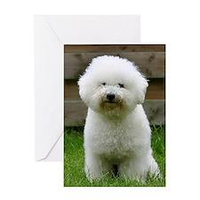 bichon-frise-0126 Greeting Card