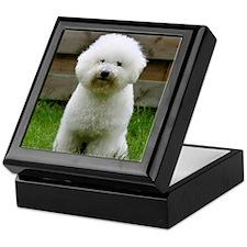 bichon-frise-0126 Keepsake Box