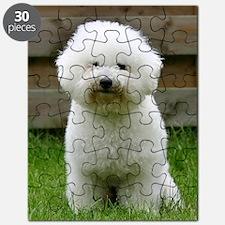 bichon-frise-0126 Puzzle
