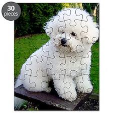 bichon-frise-0043 Puzzle
