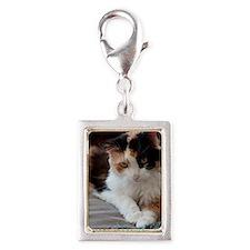 _DSC0028 Silver Portrait Charm