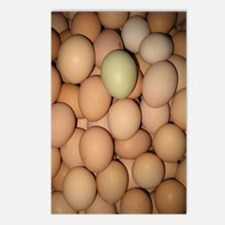 Eggs Postcards (Package of 8)
