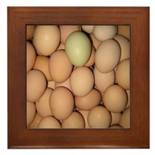 Eggs Framed Tile