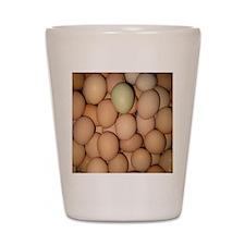 Eggs Shot Glass