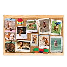 Corkboard_2_January Postcards (Package of 8)