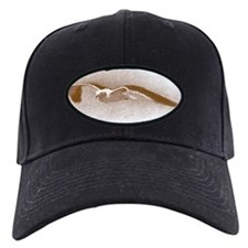 Seagull hand-draw Baseball Hat