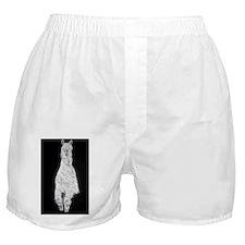 acrylic Boxer Shorts