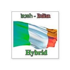 "irish_italian Square Sticker 3"" x 3"""