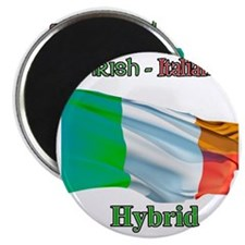 irish_italian Magnet
