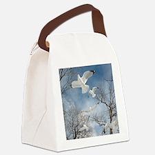 DSCN2086ii Canvas Lunch Bag