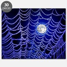 Night Web Puzzle